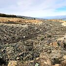 Quartz Reef Point, Northburn, Otago, New Zealand by Nic Haygarth