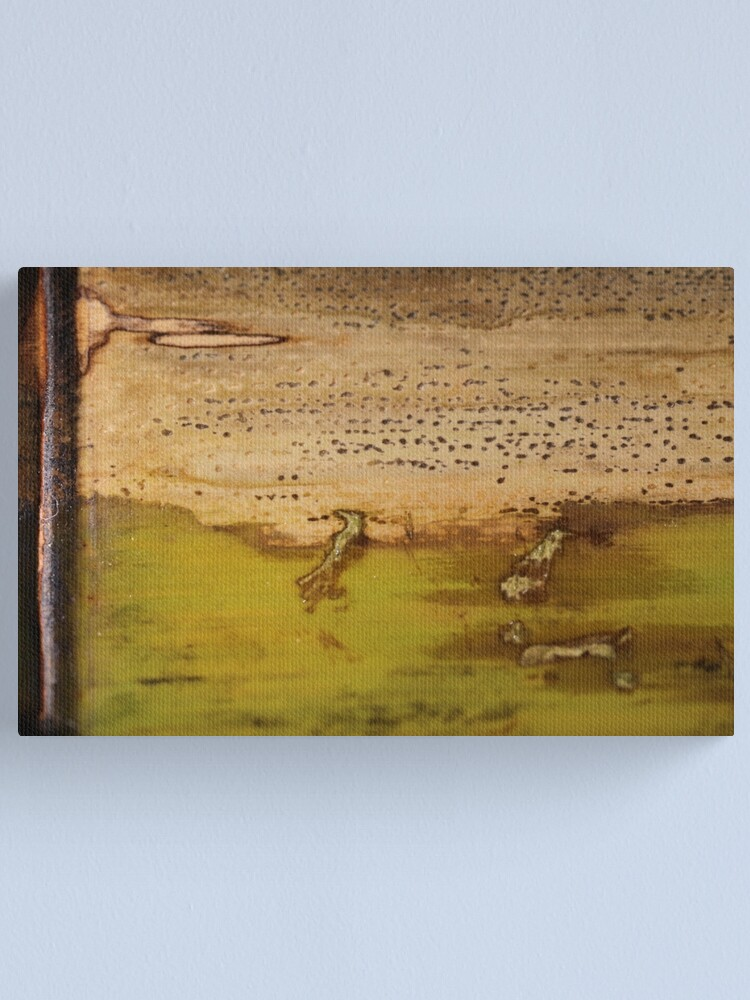Alternate view of grasping youth Canvas Print