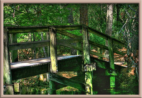 Walk Way Over The Creek by glink