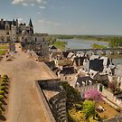 Landscaping at Amboise on the Loire by Michael Matthews