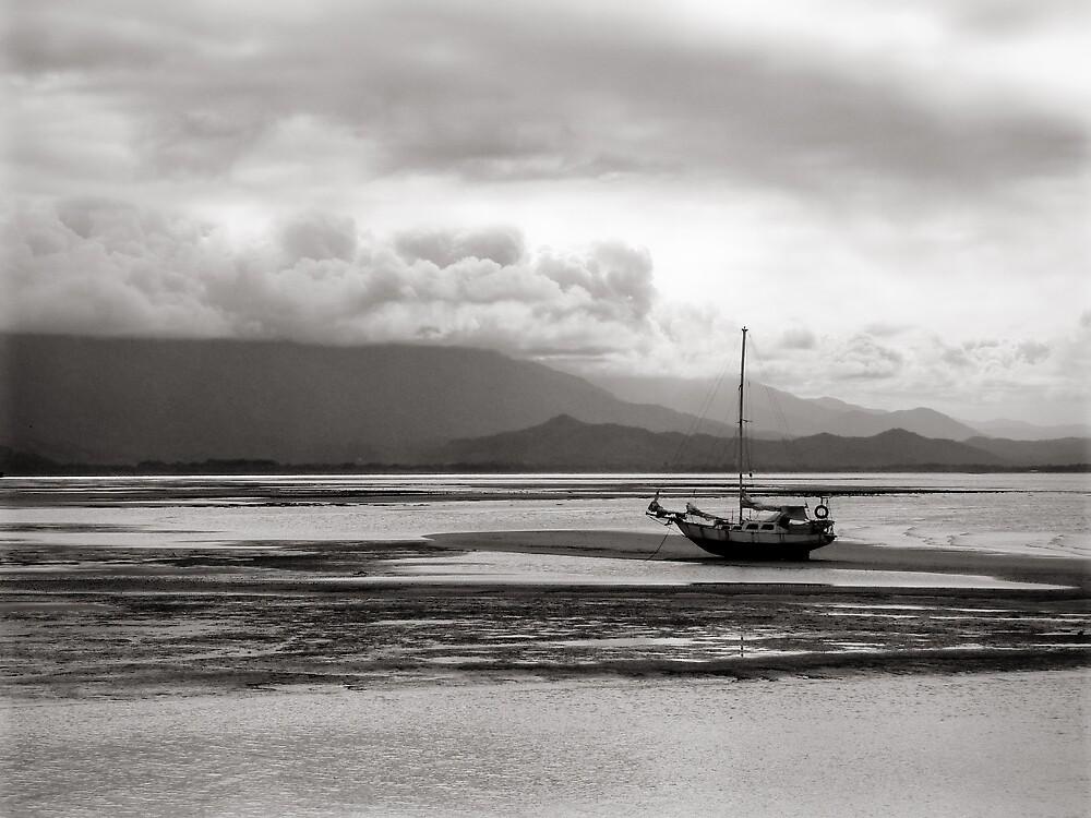 Calm Silence by Amy Adams