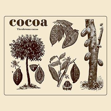 Cocoa by DedEye