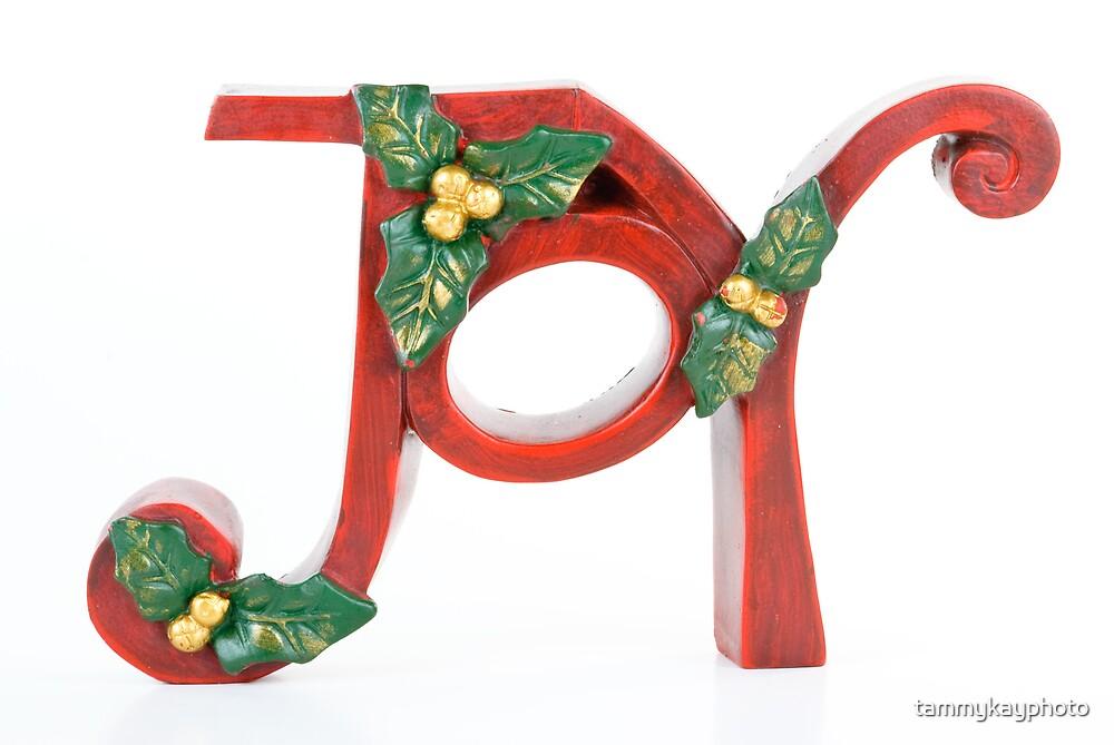 Christmas Joy by tammykayphoto