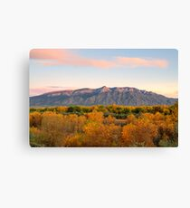 The Sandias and the Rio Grande Bosque II Canvas Print