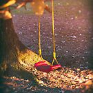 Red swing in the setting sun by Silvia Ganora