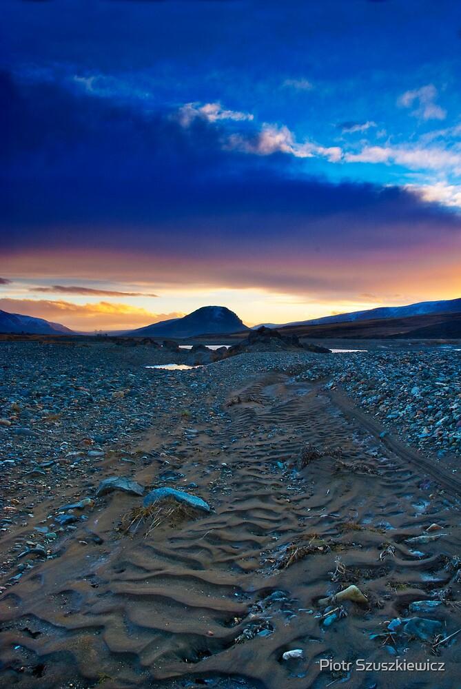 Iceland - Lagarfljot by Piotr Szuszkiewicz