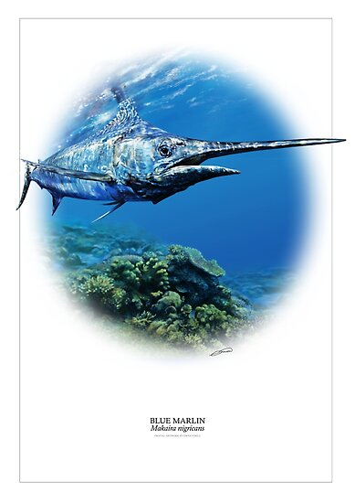 BLUE MARLIN POSTER 1 by DilettantO