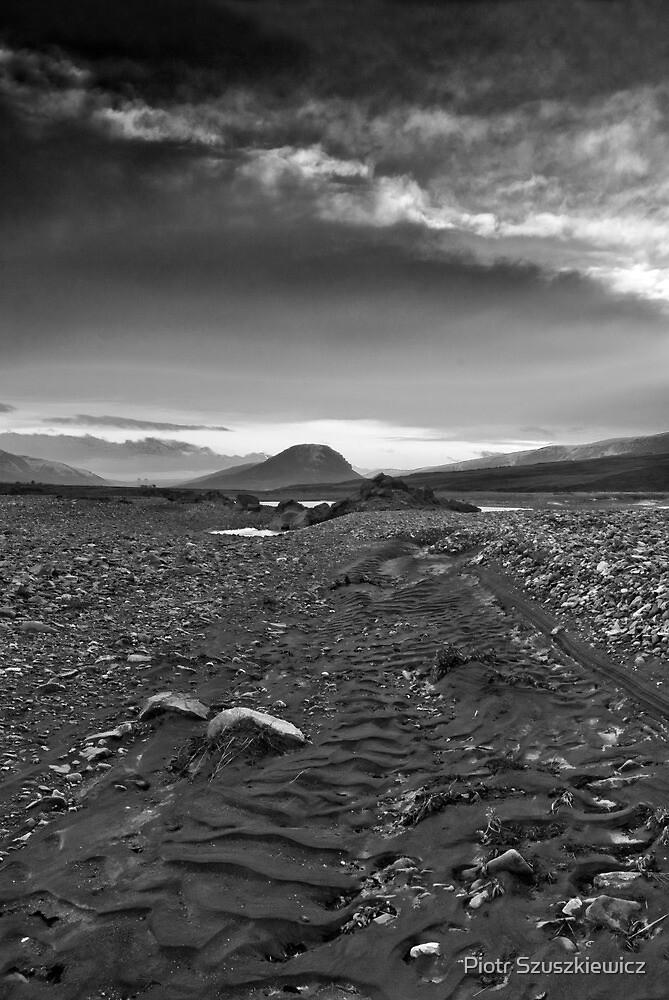 Iceland - Lagarfljot B/W by Piotr Szuszkiewicz