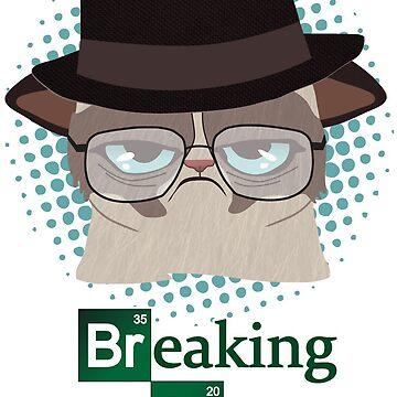 Breaking Cat by acond3