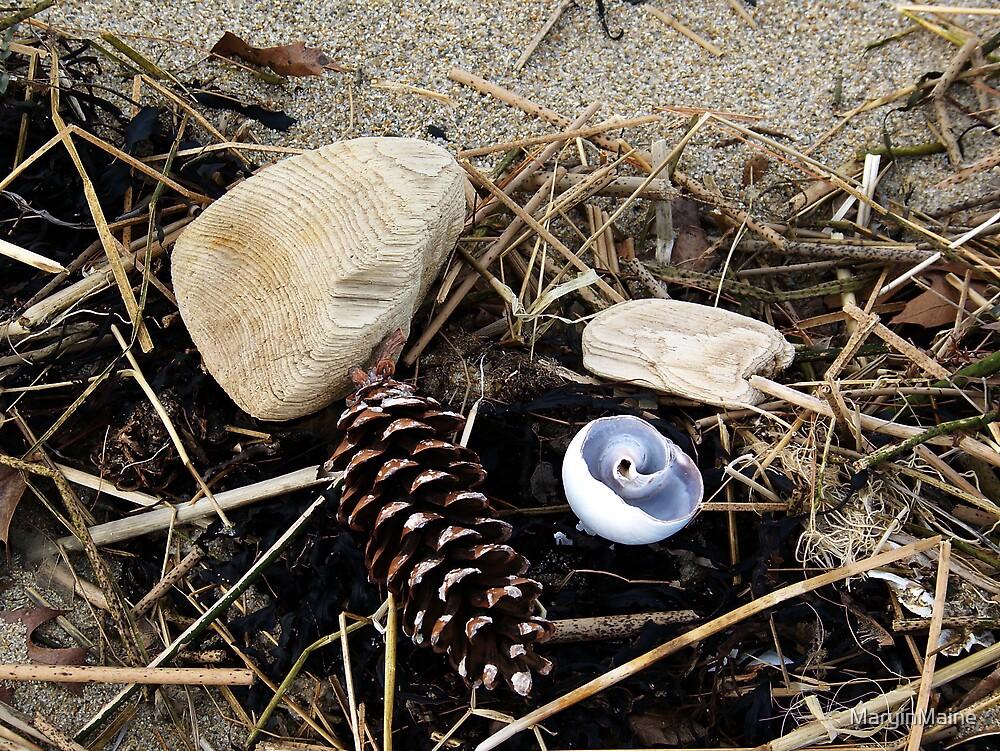 Beach Treasures - Bits of Stuff by MaryinMaine