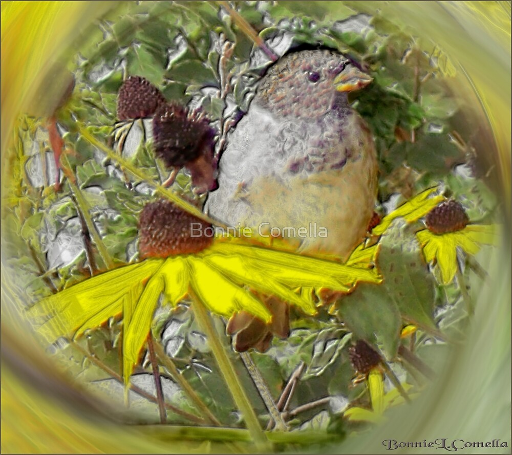 Springtime in March by Bonnie Comella
