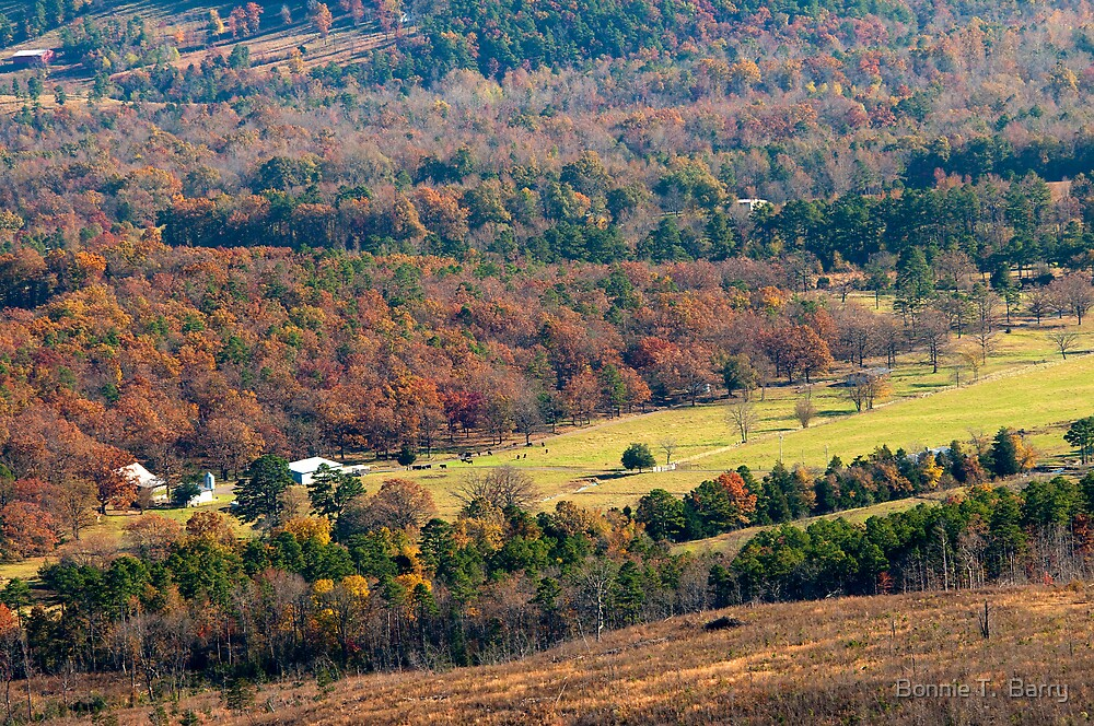 Farm in the Ozarks by Bonnie T.  Barry