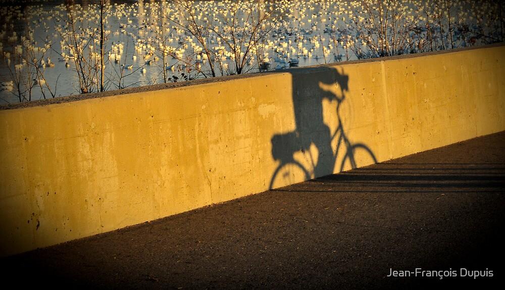 Bicycle by Jean-François Dupuis