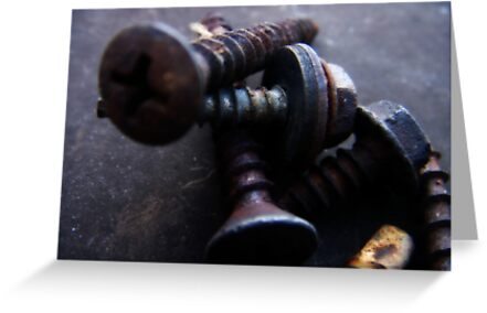 Aged Screws by tastypaper