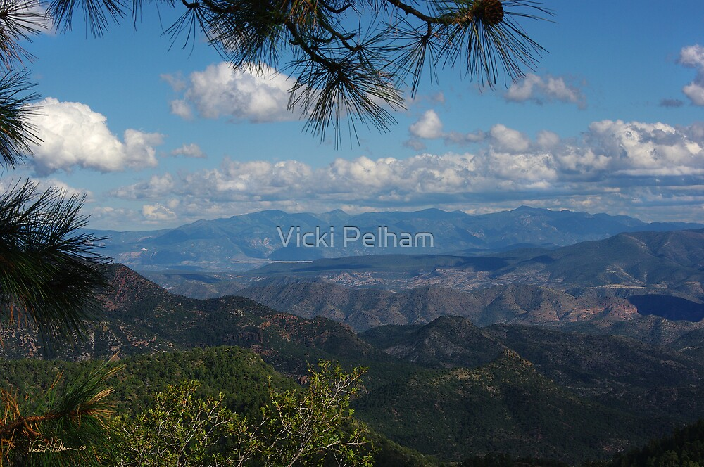Enchanted Lands of Amazing Wide Open Spaces  by Vicki Pelham