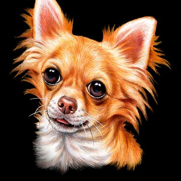 Long Hair Chihuahua Image Design  by fantasticdesign