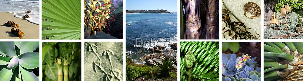 Collage of tropical images by Deb22