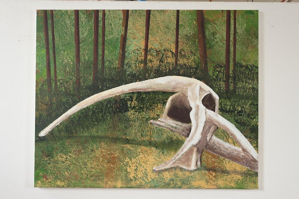 Fallen Tree In the You Yangs by Roza Ganser