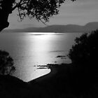 A black and white sunset by Sue Gurney