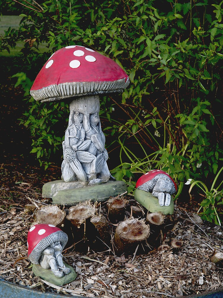Roadside Fungi by muzwilson