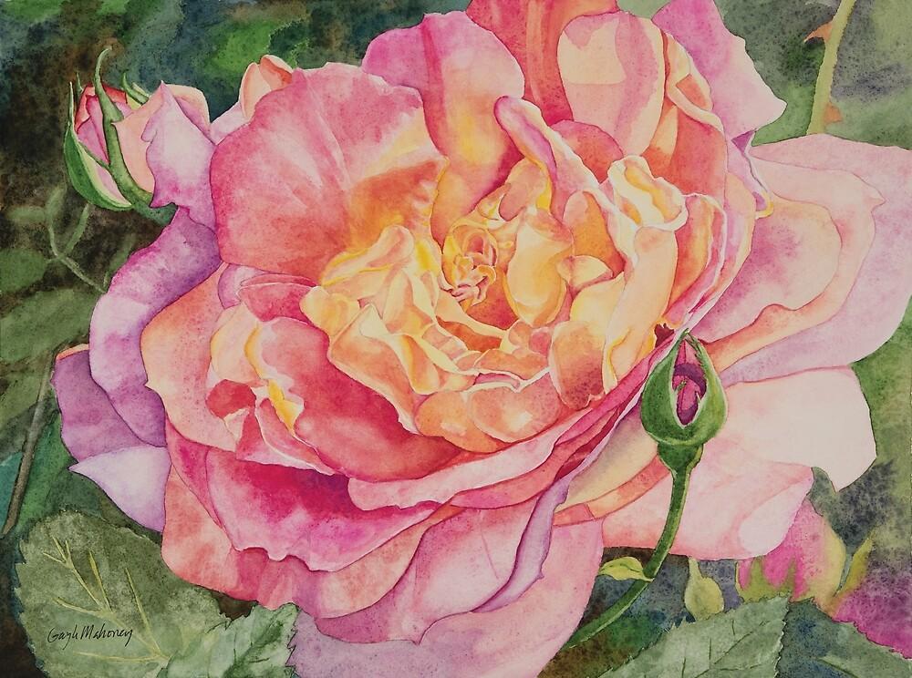 Elizabeth Rose Watercolor by Gayle Mahoney