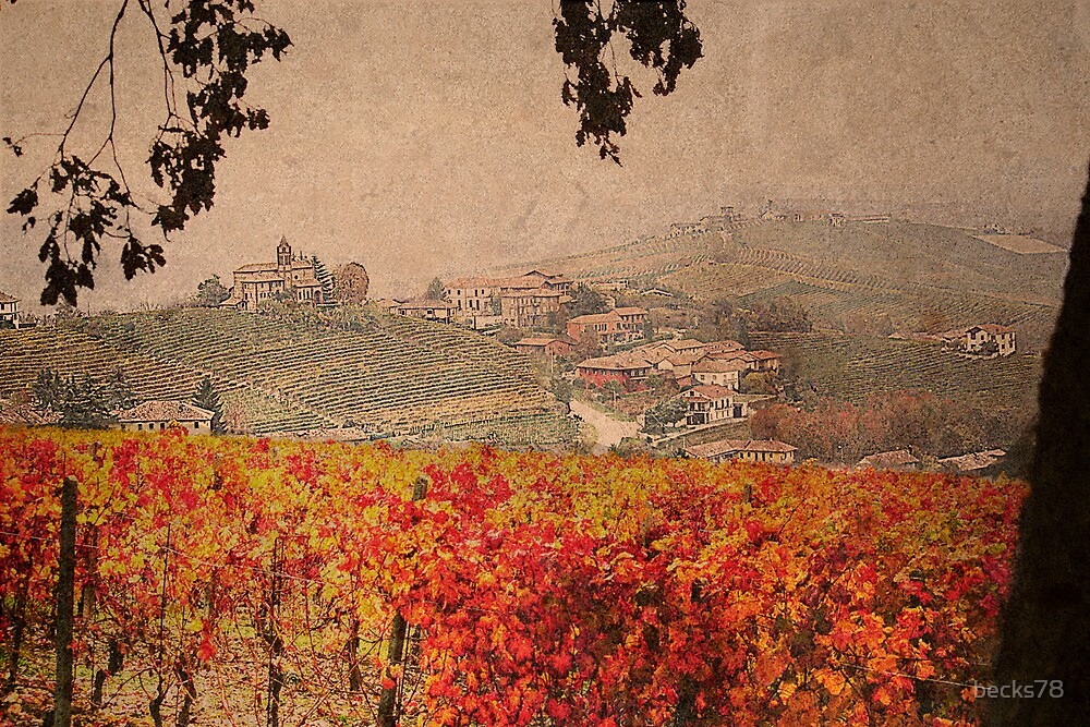 Vineyard's colors by becks78