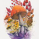 Mushroom Composition #1 | Watercolor Illustration by Stephanie KILGAST