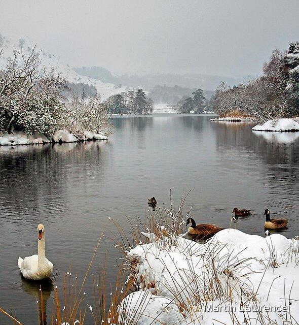 'Swan Lake', Rydal Water, Lake District by Martin Lawrence