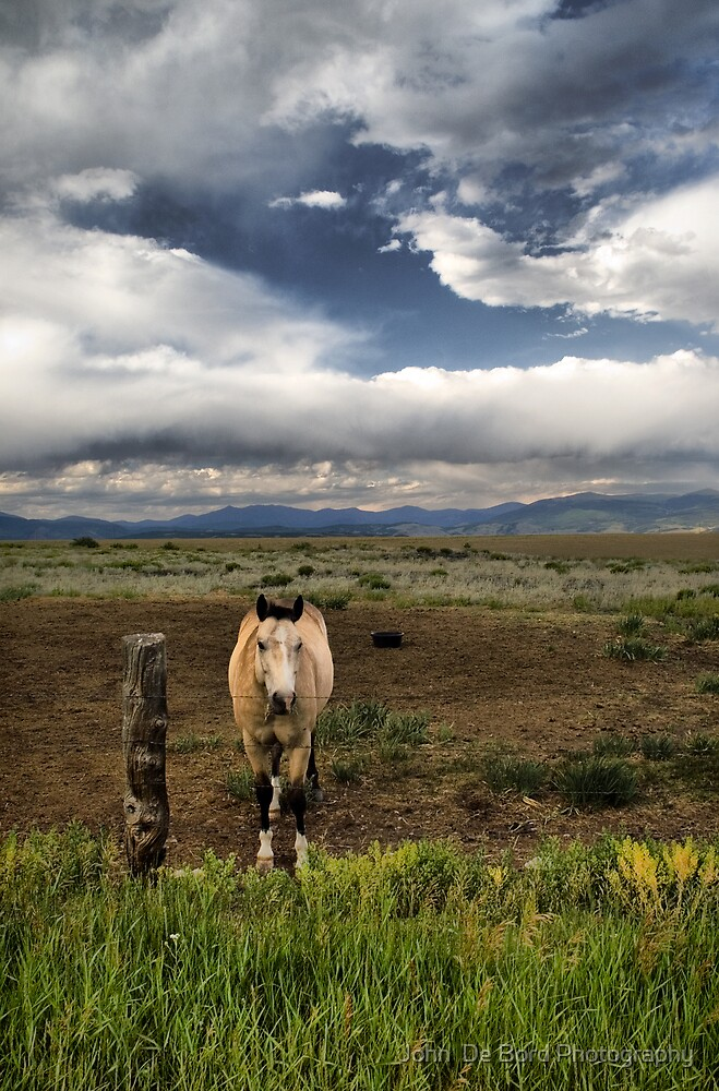 Portrait Of The American West by John  De Bord Photography