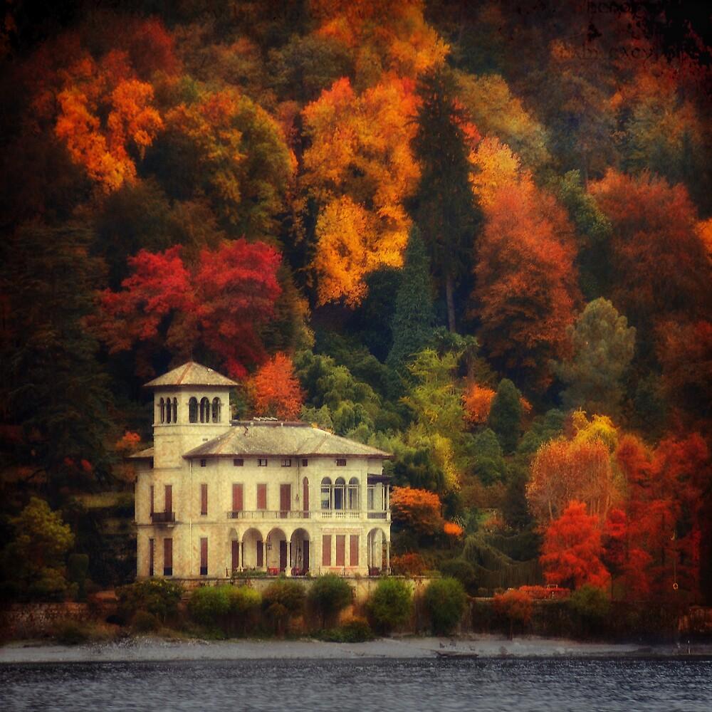 Autumn Is My Garden by Philippe Sainte-Laudy
