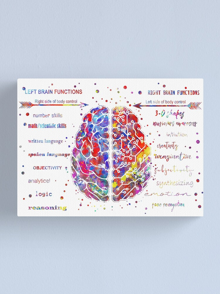 Alternate view of Left and right brain function Canvas Print