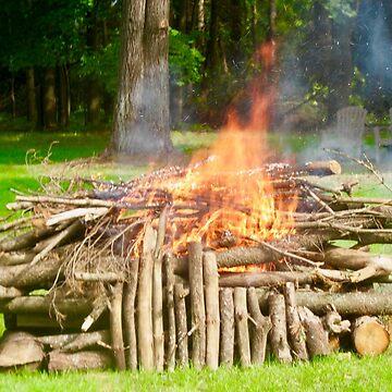 Bonfire by Shulie1