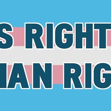 Trans Rights Human Rights by thepixelgarden