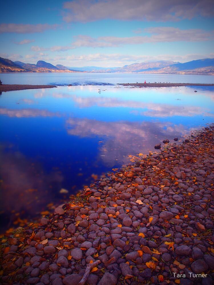 Okanagan Lake Before Work on a Sunny Saturday Morning by Tara  Turner