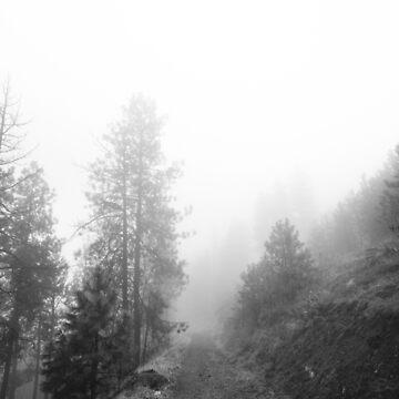Oktober Nebel von va103