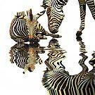 When Zebras Reflect by Ladyshark