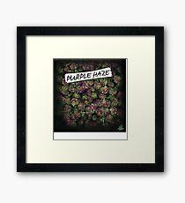 My Kush Weed Purple Haze Cannabis design Floral hemp marijuana Framed Print