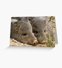 Happy as two Pigs in....... Greeting Card