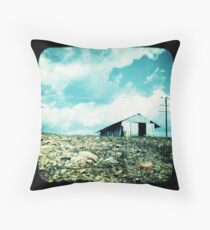 The Old Tin Shed Throw Pillow