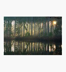 Echo~Totogatic Park, Minong, Wisconsin Photographic Print