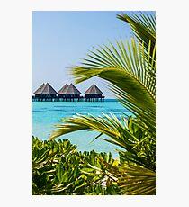 Postcard from Tahiti, French Polynesia Photographic Print
