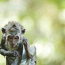 Monkey forest, Ubud, Bali by James  Archibald