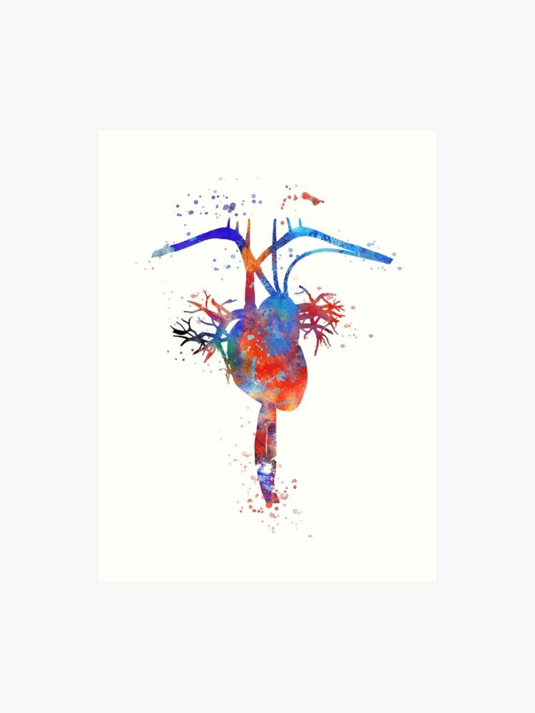Human Heart Heart Anatomy Medical Art Watercolor Heart Heart Print Abstract Heart Art Print