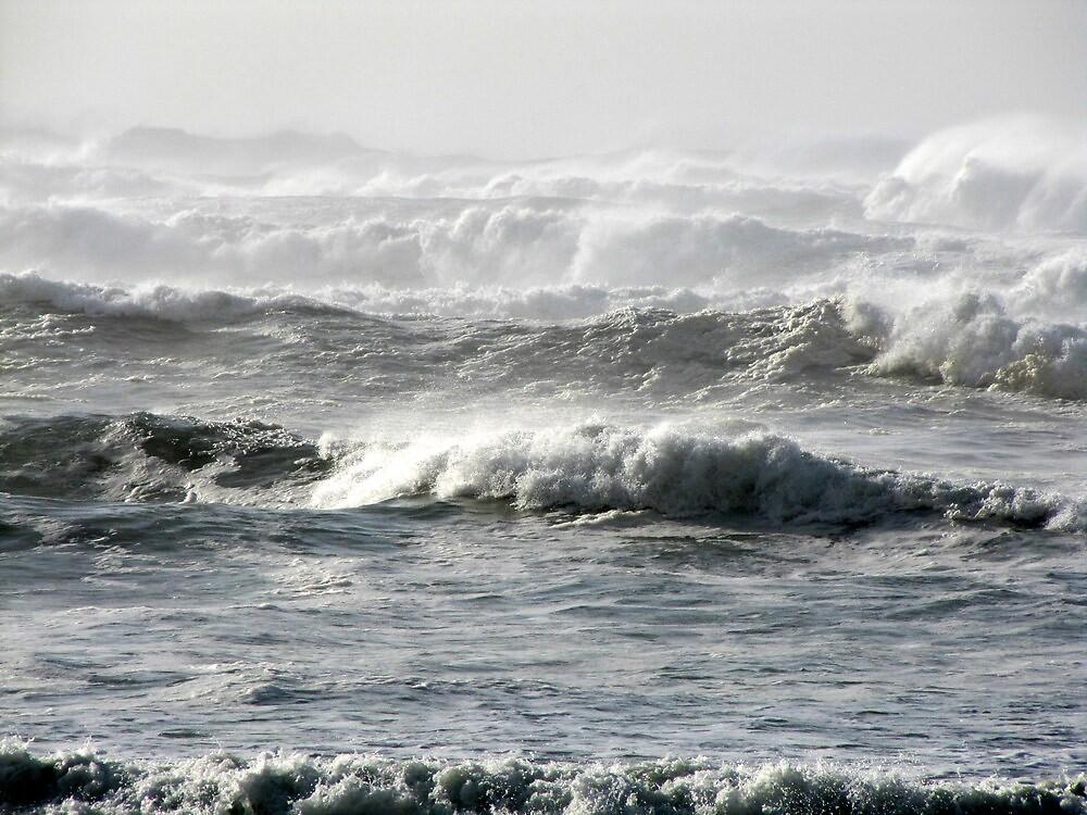 High Surf Warning 2 by Beth Johnston