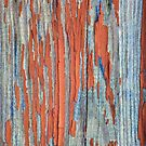 Rustic weathered wood in red by chihuahuashower