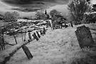 Graveyard by Andrew Dickman