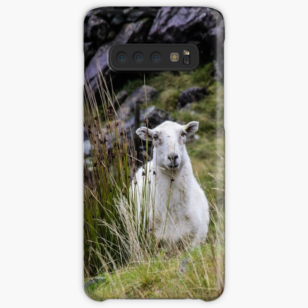 Welsh Sheep Cases & Skins for Samsung Galaxy