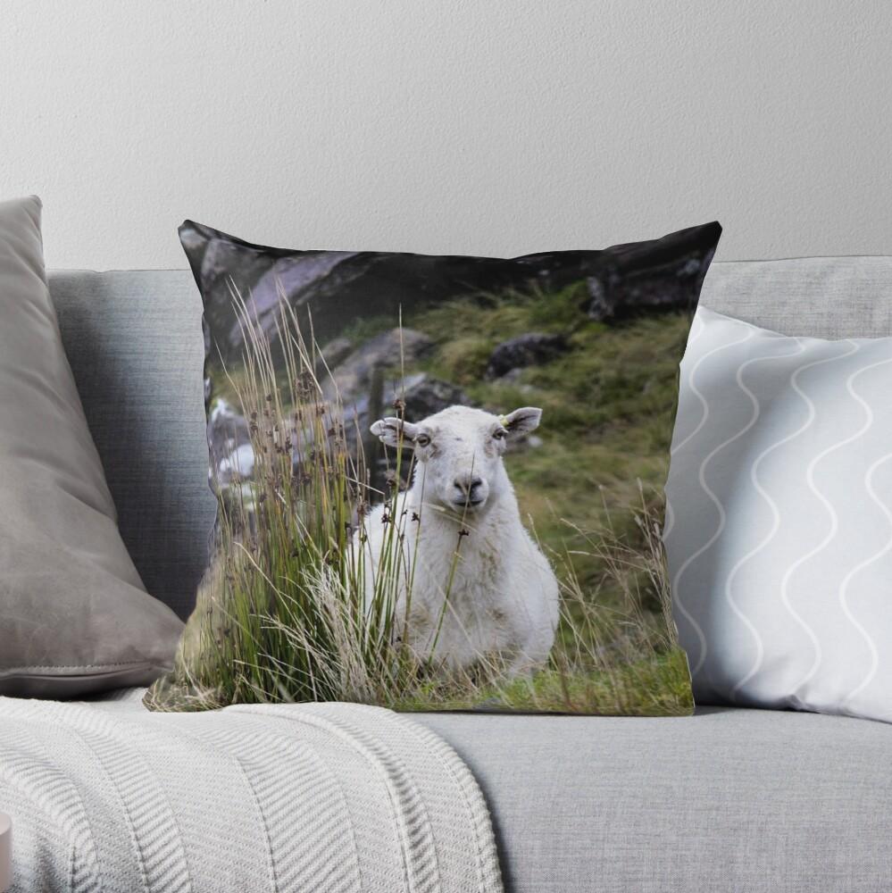 Welsh Sheep Throw Pillow