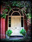 ~ The Door ~ by LeeoPhotography