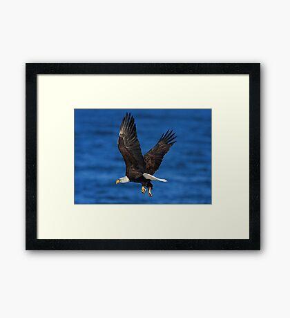 Over the Blue Framed Print